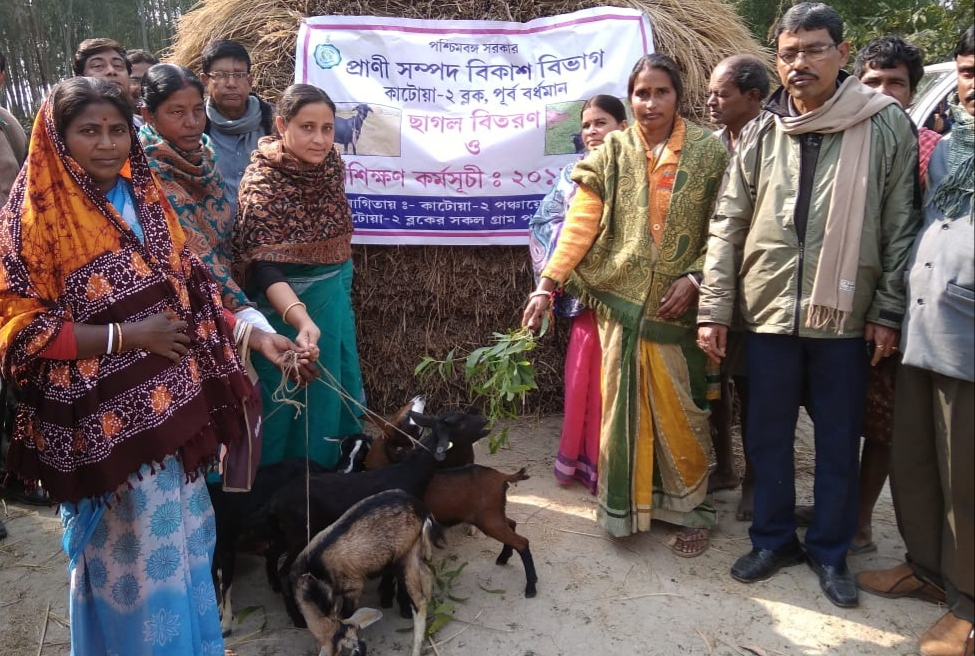 Giving the goats at the initiative of Animal Resources Development Department