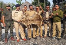 Two Nepalese arrested along with leopard leather in India-Nepal border