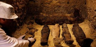 Mysterious Egypt's new forty-four mummies