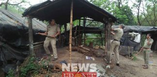 Arrested two with cholai at dandipur