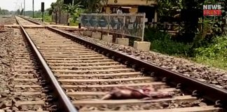 couple dead in the rail accident | newsfront.co