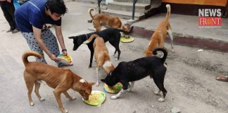 poulomi offer food to dog | newsfront.co