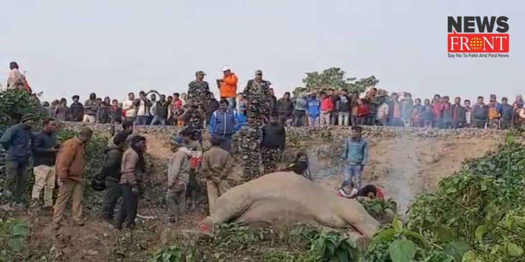 elephant dead in train accident | newsfront.co