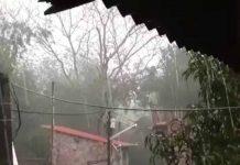 massive rain | newsfront.co