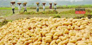 Potato | newsfront.co