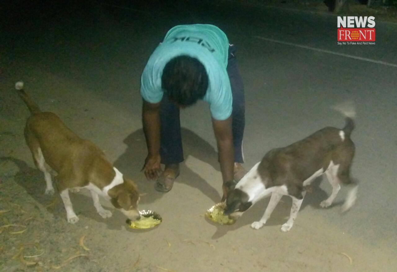 feeding dogs | newsfront.co