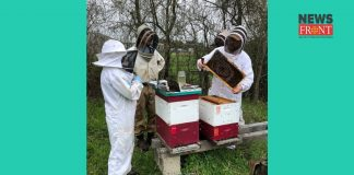 Bee farm | newsfront.co