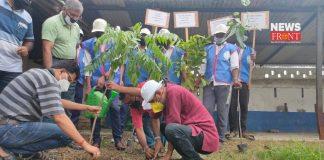 tree planting | newsfront.co
