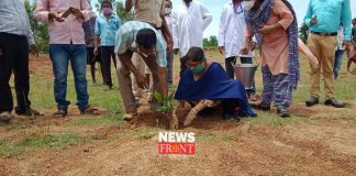 tree | newsfront.co