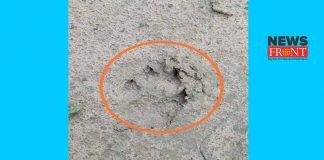 animal footprint | newsfront.co