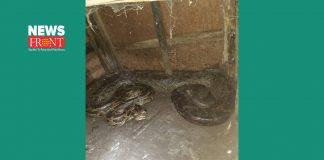 python   newsfront.co