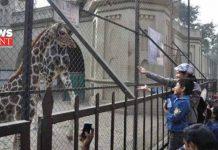 zoo | newsfront.co