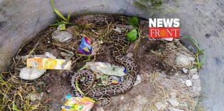 snake   newsfront.co