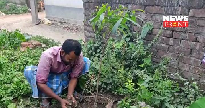 tree planting   newsfront.co