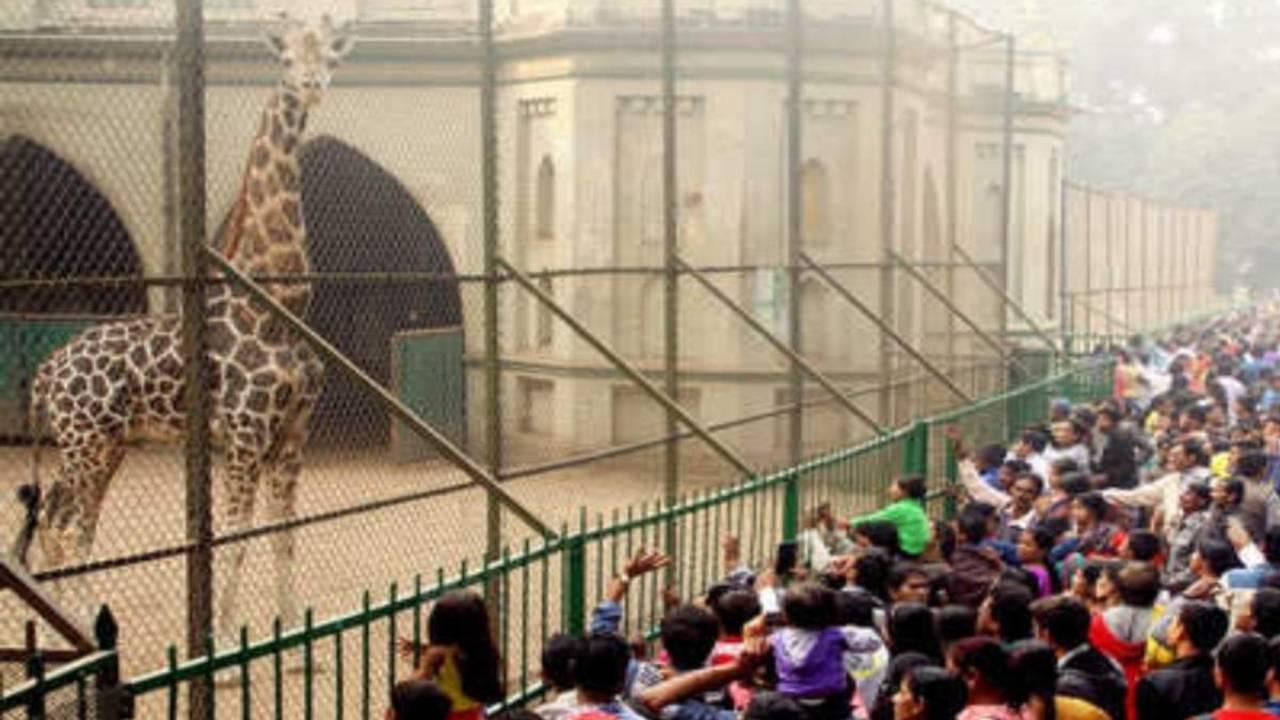 Alipore Zoological park