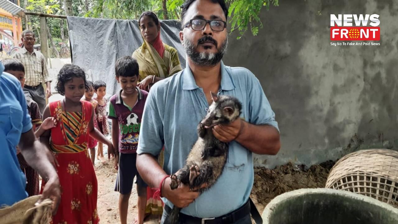 Civet Cat rescue